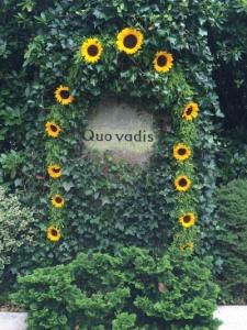Quo Vadis Hamburg